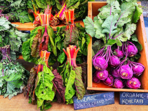 farmer's markets in toronto